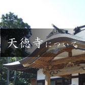 樹木葬の寺 天徳寺について