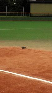 でも仕方ないよ!試合前、塁上にハトがいたから・・・