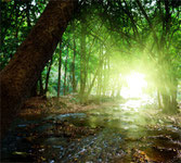 Heilungszentrum Westerwald, zu Steigerung des Wohlbefindens