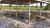 Rohbau für das Schulhaus-Provisorium