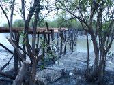 Holzbrücke in Konstruktion Seitenansicht