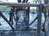 Untersicht der Holzbrücke