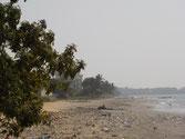 verdreckter Strand von Kokoboundji