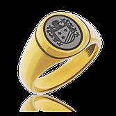 Wappenring in Weissgold angefertigt auf Kundenwunsch von der Goldschmiede OBSESSION