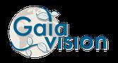 Gaiavision Schriftzug mit Weltkugel Logo