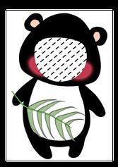 Padabär, Pandkissen, Panda Kissen, Namenskissen, Kinderkissen, Babykissen, Fotokissen, Tierkissen, Kuschelkissen