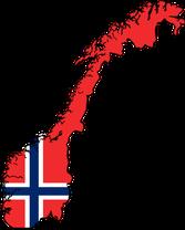 online norwegisch lernen