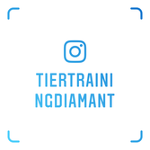 tiertraining diamant instagram, tiertrainingdiamant instragram