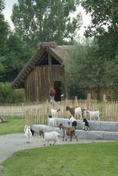 Foto: Tiergarten Straubing