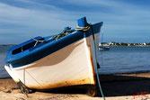 Bateau bois balnc et bleu, au sec sur le flanc attendant la marée