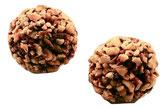 Praline - Massepain - Brésil - Corné Dynastie  - chocolat