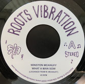 "WINSTON McANUFF, FATMAN RIDDIM  What A Man Sow / Dub  Label: Roots Vibration (7"")"