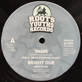 "DRE Z, BRIZION meets JOSHUA HALES Shine / Time and Space (12"") Roots Youths Records"