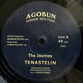 "TENA STELIN  The Journey / Up In The Sky  Label: Agobun (12"")"