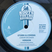"JUNIOR DELGADO, MICHAEL BUCKLEY  Storm Is Coming / Righteous One (12"")"