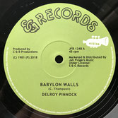 "DELROY PINNOCK  Babylon Walls (12"")"