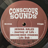 "JOSHUA HALES & BRIZION Journey Of Life ARTMAN meets DOUGIE Artman (Conscious Sounds 10"")"