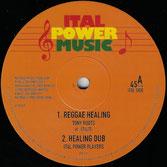 "TONY ROOTS, M. ITAL  Reggae Healing / So Shall Distance  Label: Ital Power (12"")"