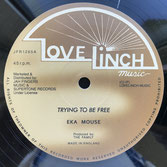 "EEK A MOUSE  Trying To Be Free / No Wicked (12"")"