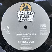 "I DAVID Strings For Jah / Until Next Time (Roots Youths 12"")"