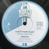 "JOHNNY OSBOURNE / LACKSLEY CASTELL  Purify Your Heart / Princess Lady (Roots Youths 12"")"