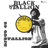 "BLACK STALLION  Stallion / Dub  Label: Hornin's Sounds (12"")"