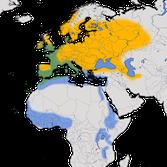 Karte zur Verbreitung der Mönchsgrasmücke (Sylvia atricapilla)