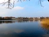 Neustrelitz, Glambecker See, Carolinum, Stadtkirche