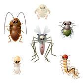 不快害虫対策 チョウバエ類 ユスリカ類 カメムシ類 ドクガ類