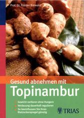 Gesund abnehmen mit Topinambur Bärwald