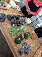 お風呂の隣で売っていた地元農家の野菜