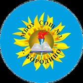 МБОУ СОШ №3 г.Бородино Красноярский край