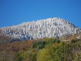 la neige a poudré le paysage