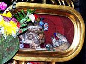 VALENTIN Reliquie in S. Maria in Cosmedin, Rom