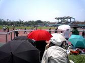 画像;スポーツイベントを観戦する人たち