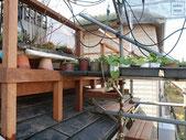 イタウバ、ウッドデッキ、屋根上、施工例