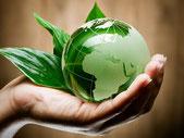 bio globe bio cleaner