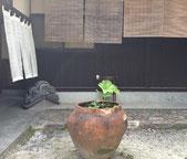 可児・加茂・多治見のエステ「心美」ブライダル・リンパ・フェイシャル・キャビテーション