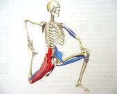 膝の痛みのストレッチ運動