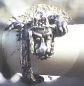シルバーリングの龍の指輪の上から画像