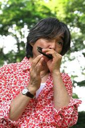 千葉 智寿(harmonica)