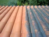 Traitement anti-verdissures toiture, façade et terrasse.