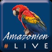 #AmazonienLive, Livereportage aus Pará/Brasilien