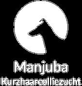 MANJUBA Kurzhaarcolliezucht