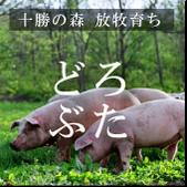 江別市野幌にある生ラムジンギスカンの店「兵屋」は、十勝の森放牧育ちの「どろぶた」を食べられます!