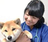 獣医師の鴨井佳奈です。