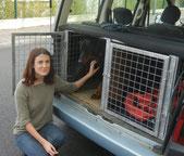 taxi pour animaux aude carcassonne