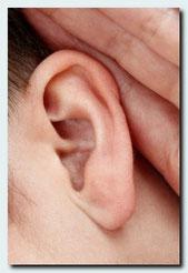 Ohr als Symbol für Psychotherapie, Paar- und Singleberatung