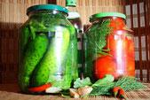 Russische Gurken Malo Sol Leicht eingelegte Rezept