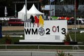 Islandpferde WM Berlin 2013